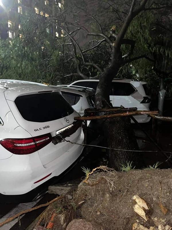 Hy hữu màn đỡ cây đổ đầy xót xa trong đêm mưa lớn tại Hà Nội: Lexus LX 570 giá chục tỷ bẹp rúm nóc xe