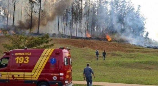 Brazil: Máy bay lao xuống rừng và phát nổ, 7 người thiệt mạng