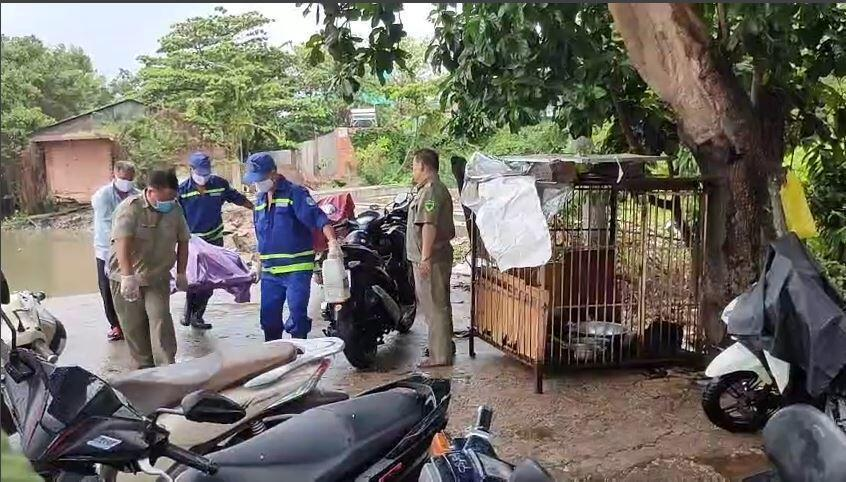 Cần thủ vứt câu tháo chạy khi thấy thi thể nổi trên sông Sài Gòn