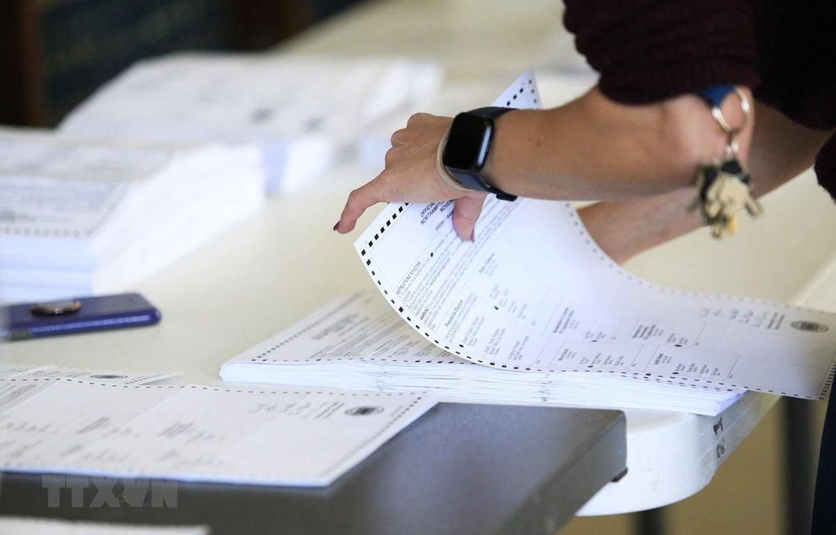 Ủy ban Tư pháp Thượng viện Mỹ cam kết điều tra sai phạm bầu cử