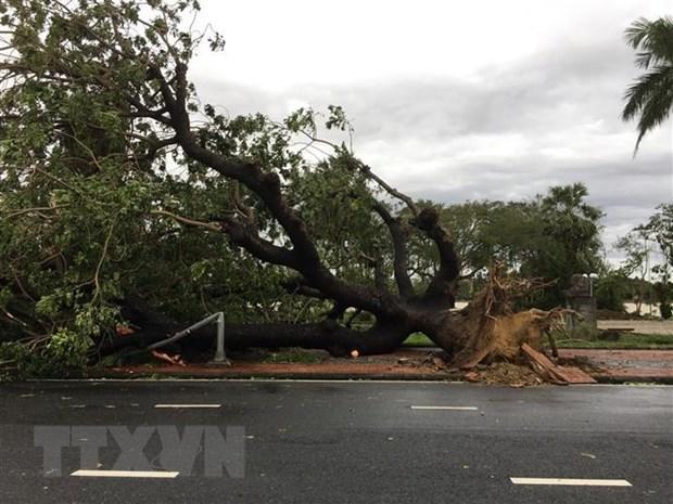 Hoàn lưu bão số 13 gây gió giật cấp 11 tại đảo Cồn Cỏ và TT-Huế